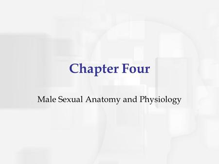 Chapter Four Male Sexual Anatomy and Physiology. The Male Sexual and Reproductive System External Sex Organs Internal Sex Organs Other Sex Organs.