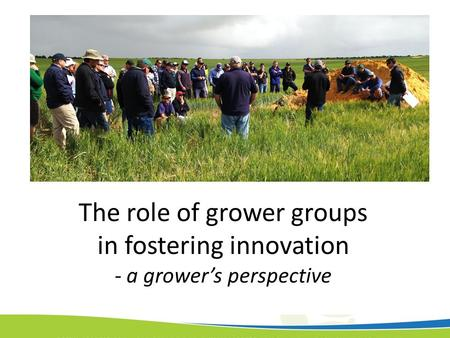 The role of grower groups in fostering innovation - a grower's perspective.