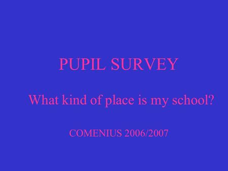 PUPIL SURVEY What kind of place is my school? COMENIUS 2006/2007.