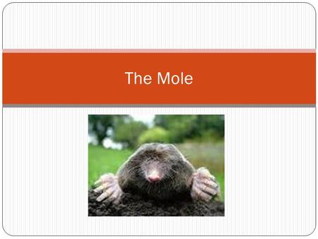 The Mole. What is a mole (mol)? A metric unit used to measure the amount of a substance 1 mole = 6.02 X 10 23 Used to count what types of things? Very.