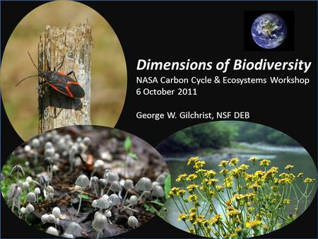 Dimensions of Biodiversity NASA Carbon Cycle & Ecosystems Workshop 6 October 2011 George W. Gilchrist, NSF DEB.