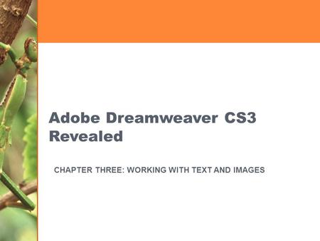 Adobe Dreamweaver CS3 Revealed CHAPTER THREE: WORKING WITH TEXT AND IMAGES.