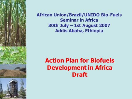 African Union/Brazil/UNIDO Bio-Fuels Seminar in Africa 30th July – 1st August 2007 Addis Ababa, Ethiopia Action Plan for Biofuels Development in Africa.