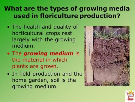 What are the types of growing media used in floriculture production? The health and quality of horticultural crops rest largely with the growing medium.