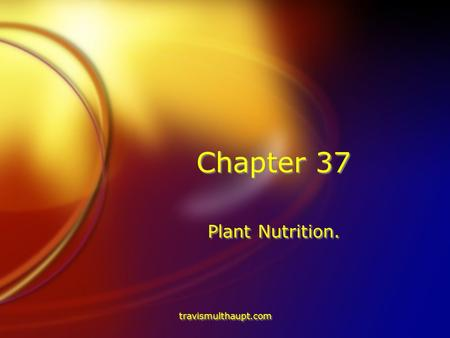 Travismulthaupt.com Chapter 37 Plant Nutrition.. travismulthaupt.com Plant Growth-Around 350 B.C. FFor centuries, people have postulated about plant growth.