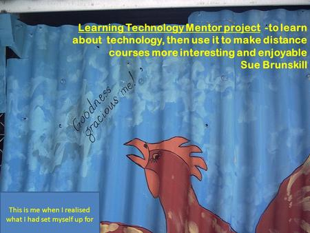 Learning Technology Mentor project -to learn about technology, then use it to make distance courses more interesting and enjoyable Sue Brunskill This is.