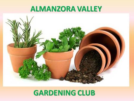 ALMANZORA VALLEY GARDENING CLUB. A POTTED HISTORY Natural remedies from your garden for medicinal and beauty purposes.