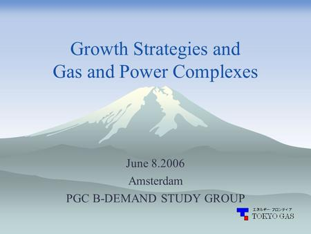 Growth Strategies and Gas and Power Complexes June 8.2006 Amsterdam PGC B-DEMAND STUDY GROUP.