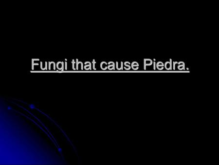 Fungi that cause Piedra.. Piadra is an infection of scalp hair caused by piedraia hortae and Trichosporon beigelii. Piadra is an infection of scalp hair.