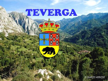 TEVERGA. FLORA Beech forests Chestnut and oak forests Ash forests Alisos forests.