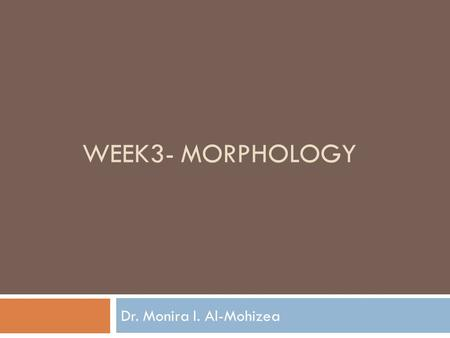 WEEK3- MORPHOLOGY Dr. Monira I. Al-Mohizea. What is this?