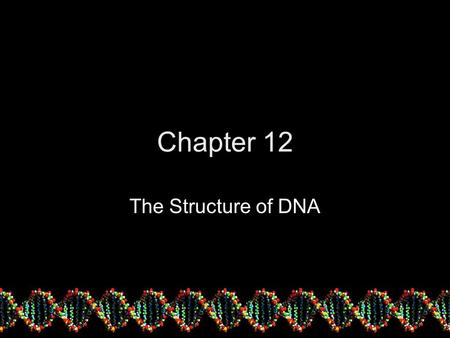 Chapter 12 The Structure of DNA. DNA the Genetic Carrier! Now, thanks to Griffith, Avery, Hershey and Chase's experiment Biologists are equipped with.