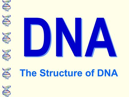 DNA The Structure of DNA. What does the DNA of all these organisms have in common? They all share a universal genetic code.