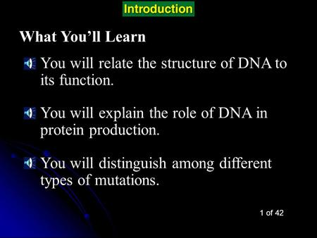 Chapter Intro-page 280 What You'll Learn You will relate the structure of DNA to its function. You will explain the role of DNA in protein production.