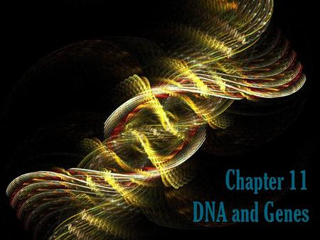 What you'll learn How to relate the structure of DNA to its function How to explain the role of DNA in protein production. How to distinguish among different.