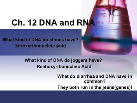 Ch. 12 DNA and RNA What kind of DNA do clones have? Xeroxyribonucleic Acid What kind of DNA do joggers have? Reeboxyribonucleic Acid What do diarrhea and.