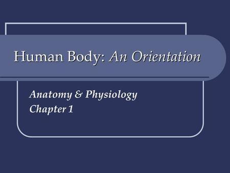 Human Body: An Orientation Anatomy & Physiology Chapter 1.