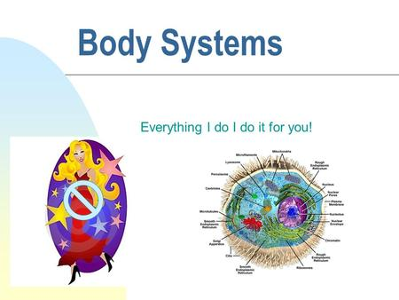 Body Systems Everything I do I do it for you!. Cells-Tissues-Organs-Body Systems C. Groups of cells which perform similar functions form tissues. D. Tissues.