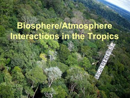 Biosphere/Atmosphere Interactions in the Tropics.