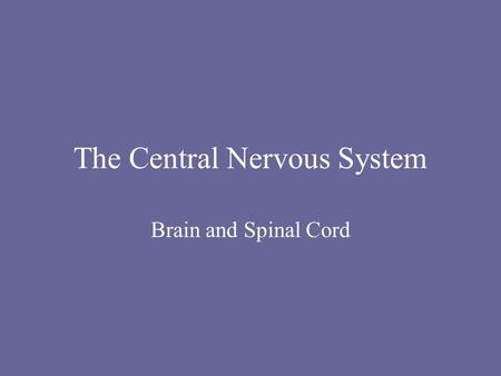 The Central Nervous System Brain and Spinal Cord.