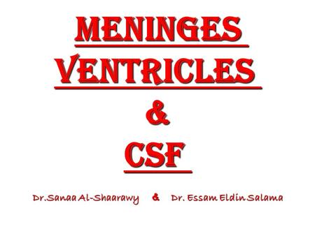 Meninges ventricles & CSF