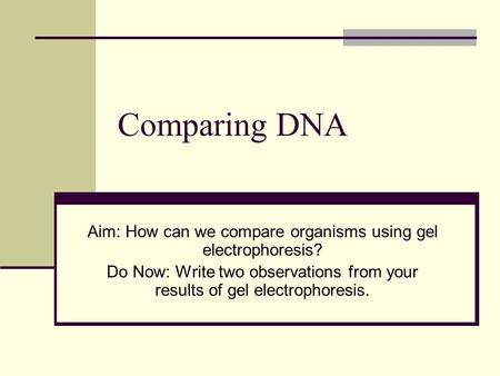 Comparing DNA Aim: How can we compare organisms using gel electrophoresis? Do Now: Write two observations from your results of gel electrophoresis.