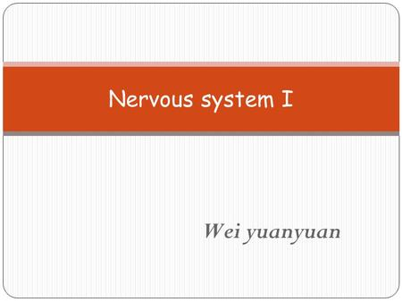 Wei yuanyuan Nervous system I. Nervous system Organization : over 100 billion neuron Central nervous system Brain + spinal cord Peripheral nervous system.