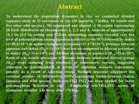 Abstract To understand the population dynamics in rice we conducted detailed sequence study in 32 accessions of rice (10 japonica, 7 indica, 10 Asiatic.