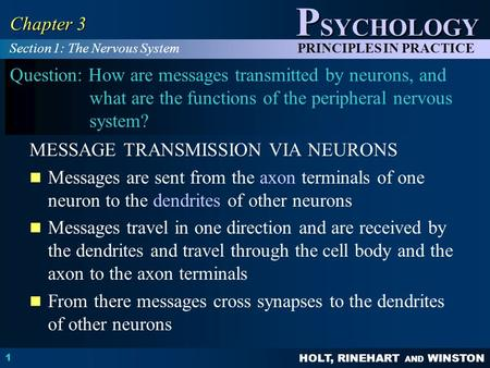 HOLT, RINEHART AND WINSTON P SYCHOLOGY PRINCIPLES IN PRACTICE 1 Chapter 3 Question: How are messages transmitted by neurons, and what are the functions.