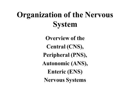 Organization of the Nervous System Overview of the Central (CNS), Peripheral (PNS), Autonomic (ANS), Enteric (ENS) Nervous Systems.