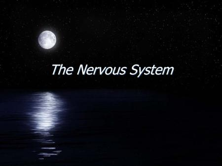 The Nervous System. Introduction FTwo organ systems, the nervous and endocrine systems, coordinate organ system activity. FThe nervous system provides.