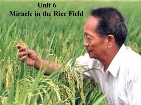Unit 6 Miracle in the Rice Field. 1.A little boy's special and mature dream 2. A man's ambitious but realistic dream 3. An organization's plan to spread.