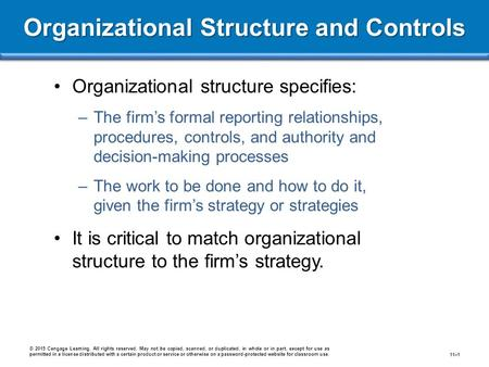 Organizational Structure and Controls Organizational structure specifies: –The firm's formal reporting relationships, procedures, controls, and authority.
