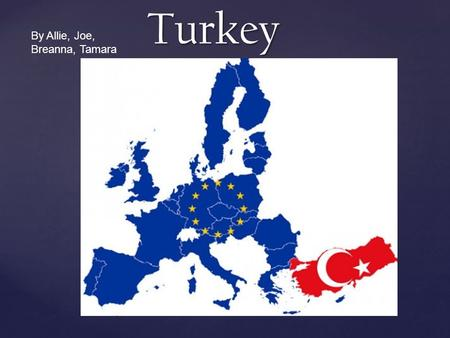 Turkey By Allie, Joe, Breanna, Tamara. Population  Population: 79, 749, 461 as of July 2011  Ethnic Groups: The Turkish (71%), Kurdish people (17%),