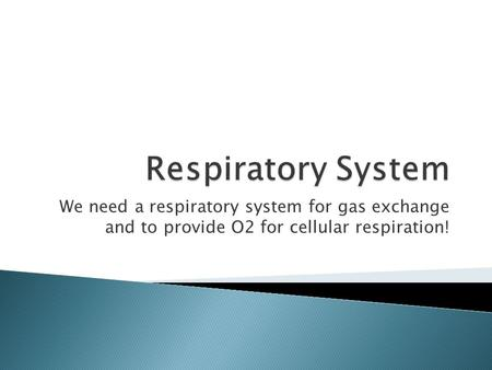 We need a respiratory system for gas exchange and to provide O2 for cellular respiration!