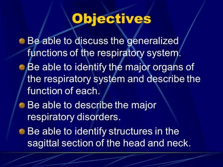 Objectives Be able to discuss the generalized functions of the respiratory system. Be able to identify the major organs of the respiratory system and describe.