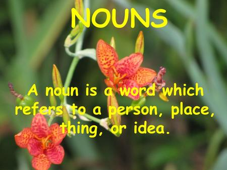 A noun is a word which refers to a person, place, thing, or idea.