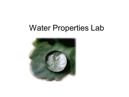 Water Properties Lab. First, a bit of chemistry…