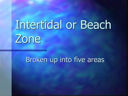 Intertidal or Beach Zone Broken up into five areas.