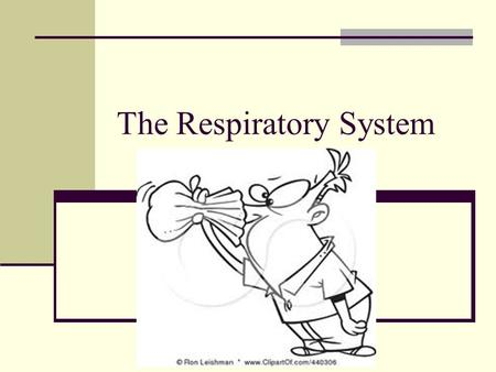 The Respiratory System. What this difference between breathing and respiration.