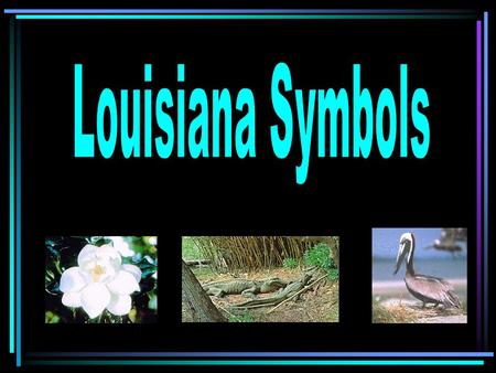 Louisiana Nicknames: –Pelican State –Bayou State – Sportsman's Paradise – Child of the Mississippi – The Sugar State – The Creole state.