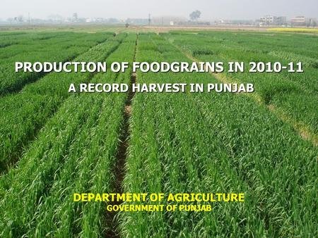 PRODUCTION OF FOODGRAINS IN 2010-11 A RECORD HARVEST IN PUNJAB A RECORD HARVEST IN PUNJAB DEPARTMENT OF AGRICULTURE GOVERNMENT OF PUNJAB.