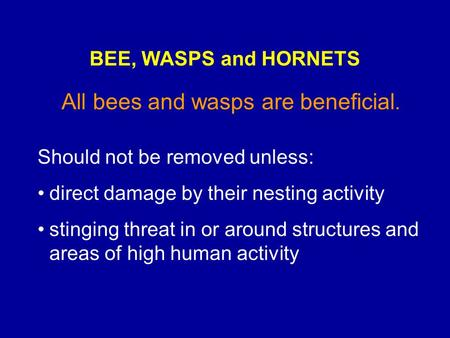 All bees and wasps are beneficial. Should not be removed unless: direct damage by their nesting activity stinging threat in or around structures and areas.