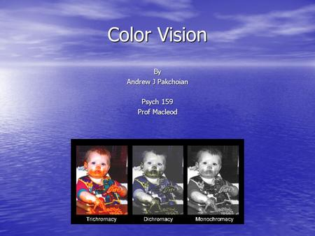 Color Vision By Andrew J Pakchoian Psych 159 Prof Macleod.