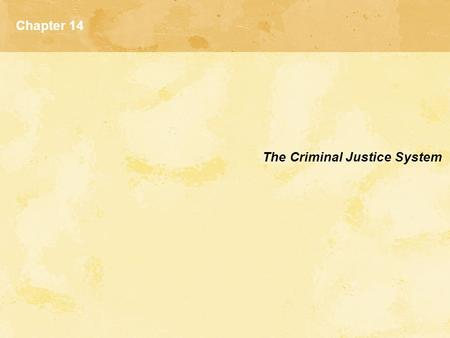 Chapter 14 The Criminal Justice System.