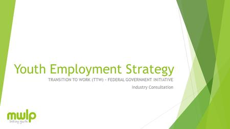 Youth Employment Strategy TRANSITION TO WORK (TTW) – FEDERAL GOVERNMENT INITIATIVE Industry Consultation.