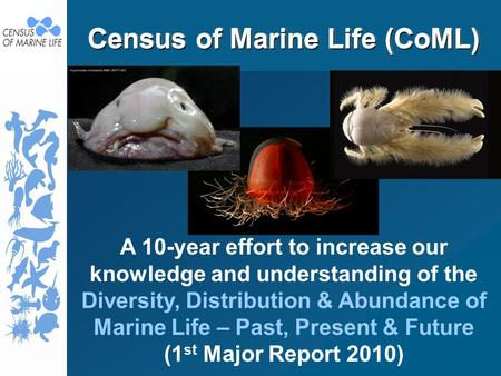 Census of Marine Life (CoML) A 10-year effort to increase our knowledge and understanding of the Diversity, Distribution & Abundance of Marine Life – Past,
