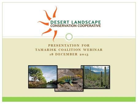 PRESENTATION FOR TAMARISK COALITION WEBINAR 18 DECEMBER 2013.