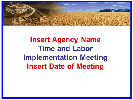 11 Insert Agency Name Time and Labor Implementation Meeting Insert Date of Meeting.