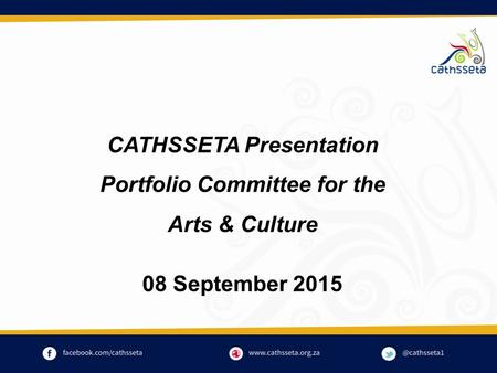 CATHSSETA Presentation Portfolio Committee for the Arts & Culture 08 September 2015.
